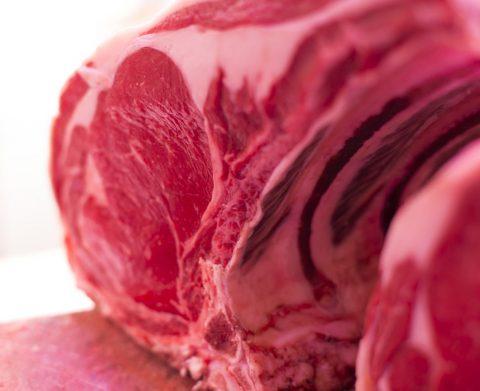 Carne CG 1