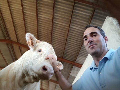 Casa Gutier, carne de ternera con omega 3 natural